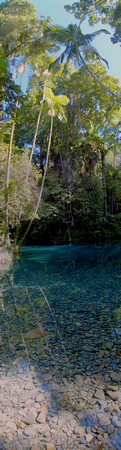 Blue Waterhole, The Daintree