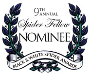 9th Annual Black & White Spider Awards Certificate